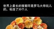 十万个冷知识:世界上最长的雏菊环是罗马大帝玩儿的,他连了30个人