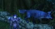 魔兽灵魂兽闪电之爪坐标 猎人史诗级BUFF