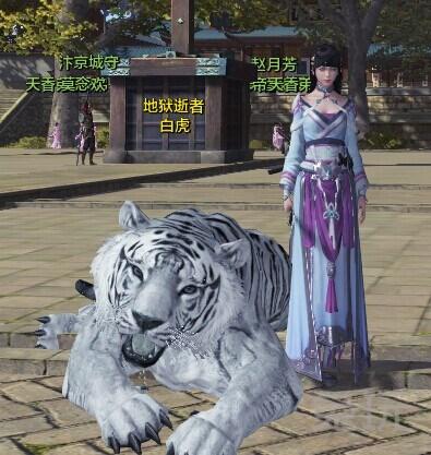 天涯明月刀ol最霸气的宠物 白虎获得方法