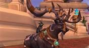 万人骑的德鲁伊!小德旅行形态可驮猫宠物