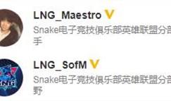 中国李宁收购SNAKE后会发生什么?