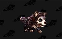 6.2追随者任务更新 奖励玩具宠物和坐骑