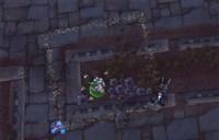 捅破这层窗户纸 始祖龟小游戏仅需4秒就完成!