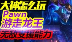 大神怎么玩:Pawn龙王一级单杀 无敌支援