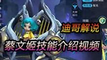 迪哥解说王者荣耀蔡文姬新英雄技能介绍视频