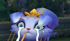 联盟时刻:生活终于对我这只小猫咪出手了