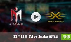 德玛西亚杯11月12日 IMvsSnake第五局录像