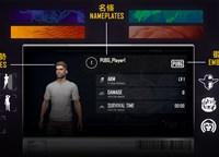 PUBG生存系统即将上线 玩家资料卡可自定义