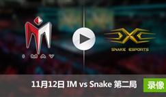 德玛西亚杯11月12日 IMvsSnake第二局录像