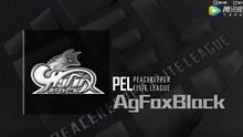PEL和平精英职业联赛晋级赛战队巡礼—AgFoxBlack
