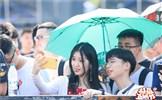2019斗鱼嘉年华盛大开幕 豪华级主播阵容史无前例