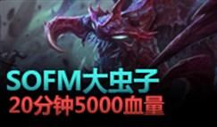 大神怎么玩:Sofm大虫子 20分钟五千血虐泉