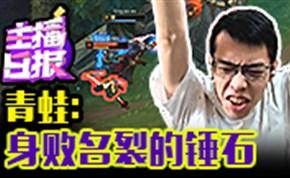 主播日报8.15:青蛙身败名裂的锤石